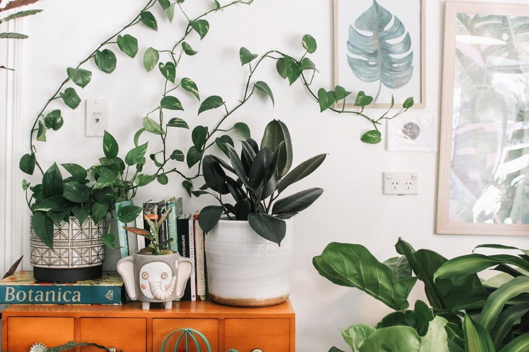 Give Your Home an Uplift – 2018 Green Trends - Green Homes NZ