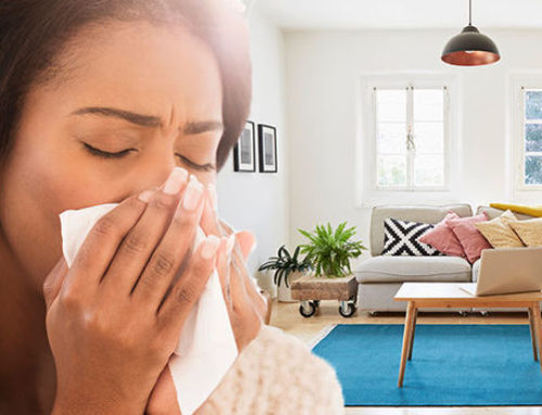 Combating Home Allergens